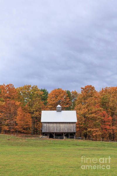 Photograph - Jericho Hill Vermont Barn by Edward Fielding