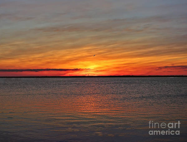 Photograph - Jersey Shore Sunset Hdr by Jeff Breiman