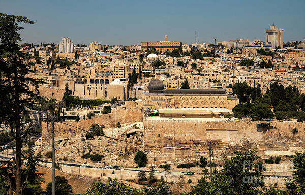 Photograph - Jerusalem by Mae Wertz