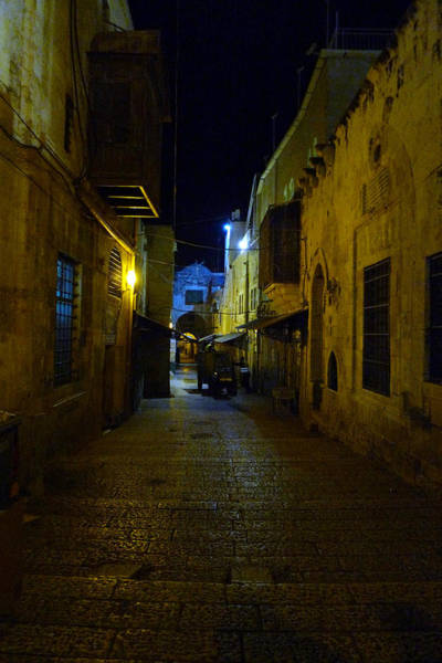 Photograph - Jerusalem Of Copper 3 by Dubi Roman