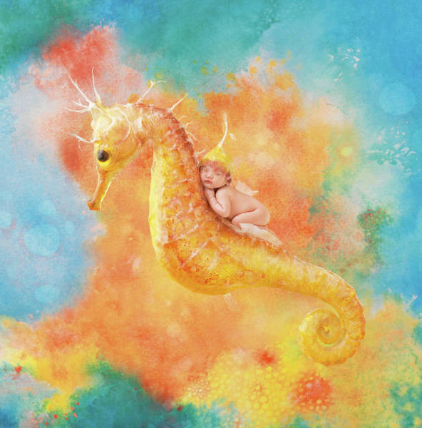 Seahorse Photograph - Jessabella Riding A Seahorse by Anne Geddes