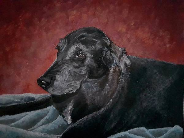 Painting - Jessie by Carole Hutchison
