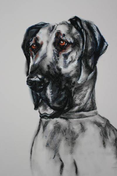 Black Great Dane Painting - Jethro by Gayle  George