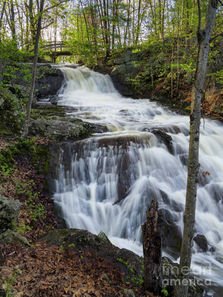 Photograph - Jewell Falls In Spring, Portland, Maine  -72137-72140 by John Bald