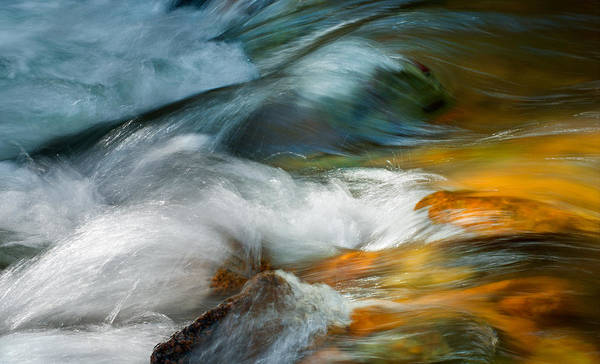 Wall Art - Photograph - Jewels In The Stream by Tim Reaves