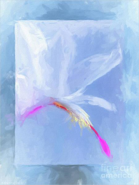 Yule Digital Art - Jewels by Mona Stut