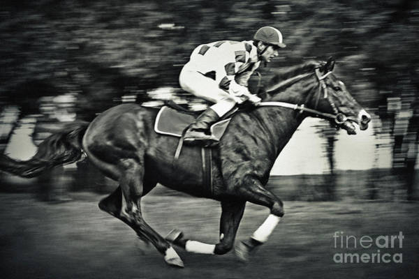 Photograph - Jockey Riding Gamble Horse by Dimitar Hristov