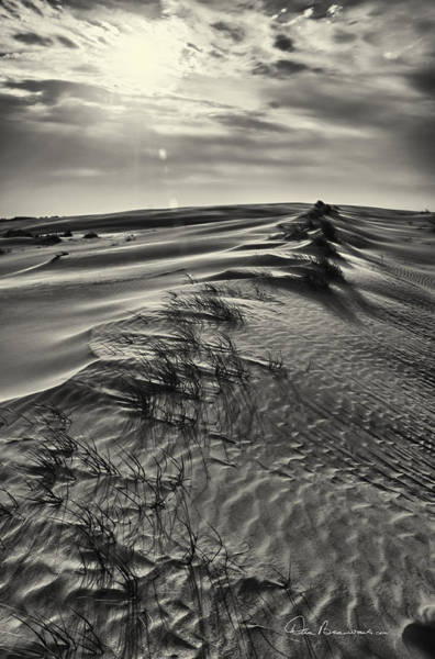 Photograph - Jockey's Ridge Texture 7116 by Dan Beauvais