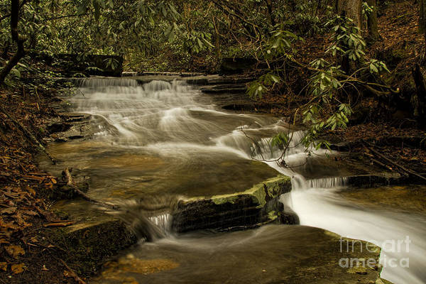 Photograph - Joe's Creek by Barbara Bowen