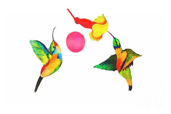 Wall Art - Photograph - Joe's Hummingbird Art by Al Bourassa