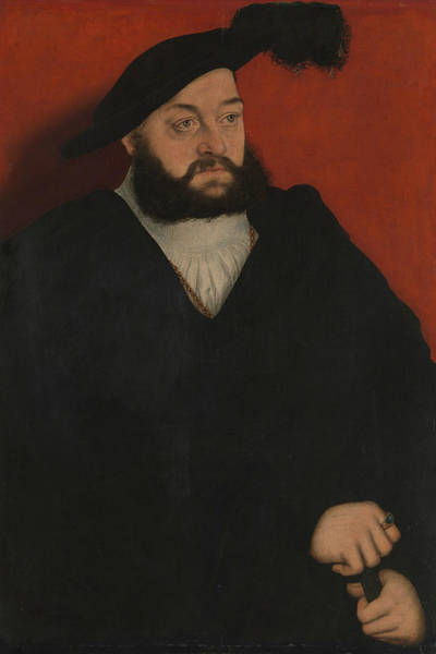 Cranach Painting - Johann, Duke Of Saxony by Lucas Cranach the Elder