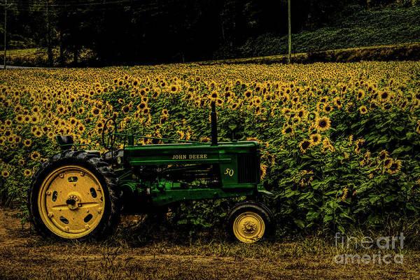Photograph - John Deer Tractor In Sunflower Field by Barbara Bowen