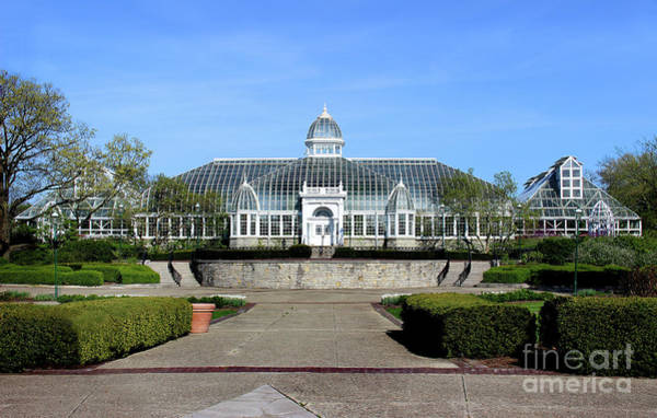 Photograph - John F Wolfe Palm House At Franklin Park by Karen Adams