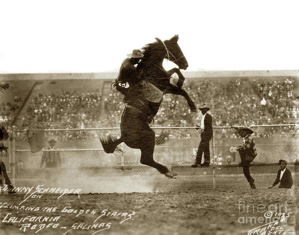 Photograph - Johnny Schneider  Climbing The Golden Stairs, California Rodeo, 1925 by California Views Archives Mr Pat Hathaway Archives