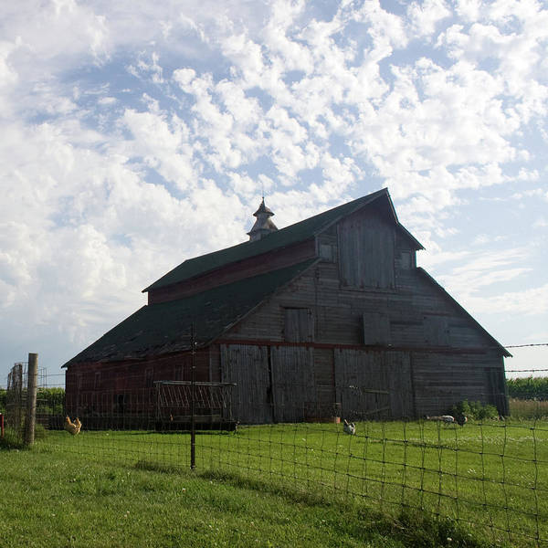 Photograph - John's Barn by Dylan Punke