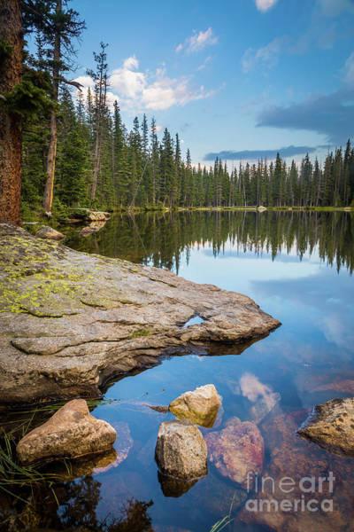 Nps Photograph - Johnson Lake Shoreline by Inge Johnsson