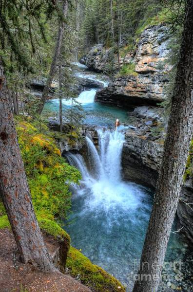 Photograph - Johnston Canyon Falls Hike Lower Falls II by Wayne Moran