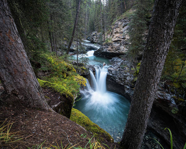 Photograph - Johnston Canyon Waterfall by James Udall