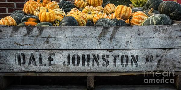 Photograph - Johnston Fruit Farms by Michael Arend