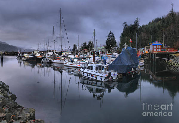 Photograph - Johnstone Straight Reflections by Adam Jewell