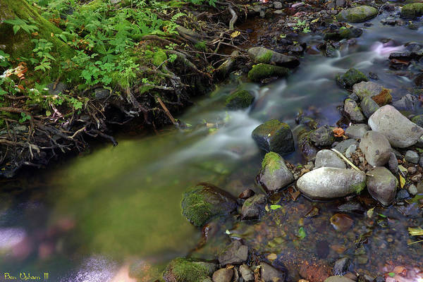 Photograph - Jones Creek #1 by Ben Upham III