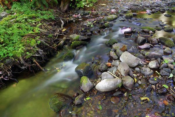 Photograph - Jones Creek #2 by Ben Upham III