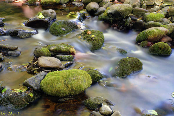 Photograph - Jones Creek #3 by Ben Upham III