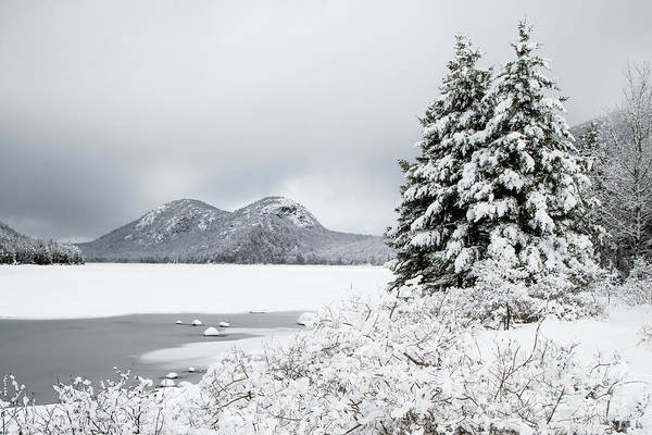 Wall Art - Photograph - Jordan Pond And The Bubbles In Winter by Benjamin Williamson