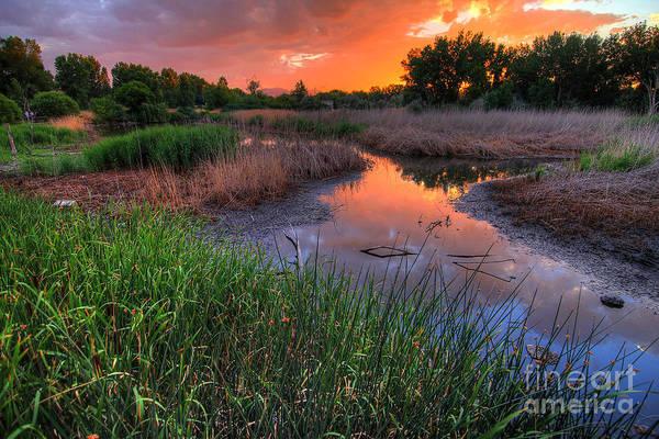Photograph - Jordan River Parkway Sunset 2 by Spencer Baugh