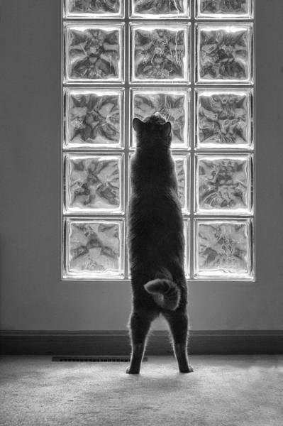 Joseph At The Window Art Print