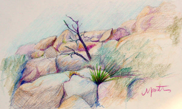 Colored Pencil Drawing - Joshua Tree  by Athena Mantle