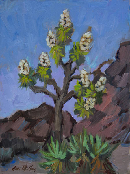 Wall Art - Painting - Joshua Tree In Bloom by Diane McClary