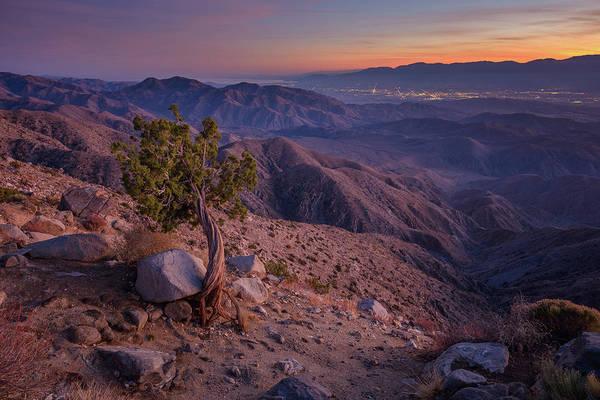 Photograph - Joshua Tree - Keys View Juniper And Coachella Valley by Alexander Kunz