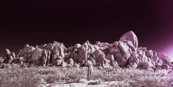 Photograph - Joshua Tree Moonscape by Blake Webster