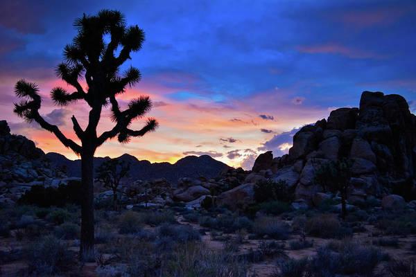 Photograph - Joshua Tree Rainbow Skies by Kyle Hanson