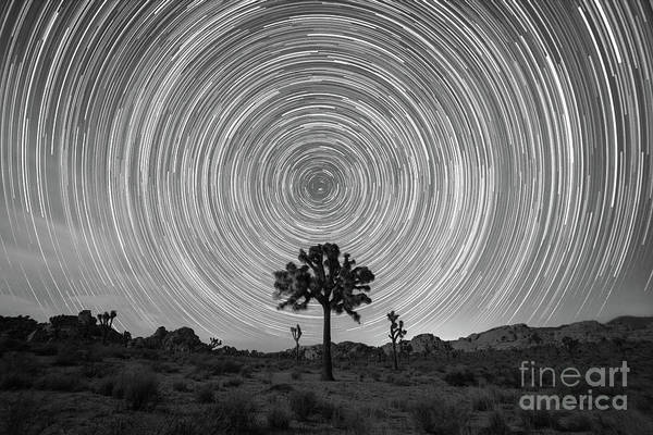 Star Trails Photograph - Joshua Tree Star Trails Bw by Michael Ver Sprill