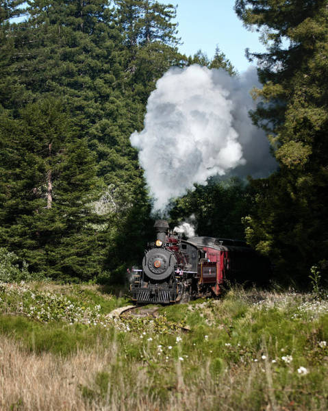 Wall Art - Photograph - Journey By Steam by Betty Depee