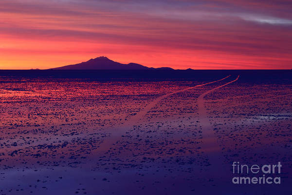 Photograph - Journey In A Purple Dreamland by James Brunker