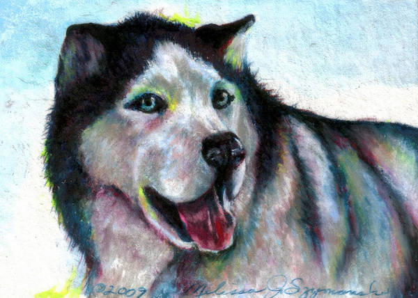 Furry Drawing - Jovial Nanook by Melissa J Szymanski