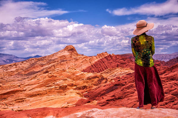 Valley Of Fire State Park Digital Art - Joy Of Nature by Artist Jacquemo