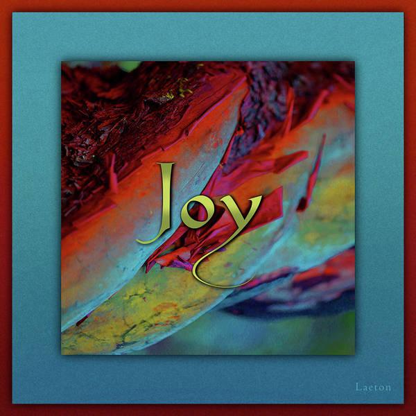 Digital Art - Joy by Richard Laeton