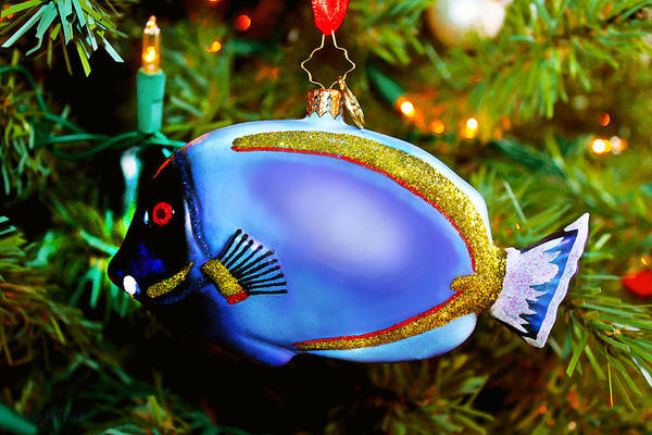Photograph - Joy To The Fishes On The Christmas Tree by Susan Vineyard