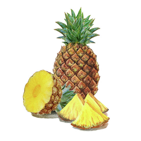 Painting - Juicy Pineapple by Irina Sztukowski