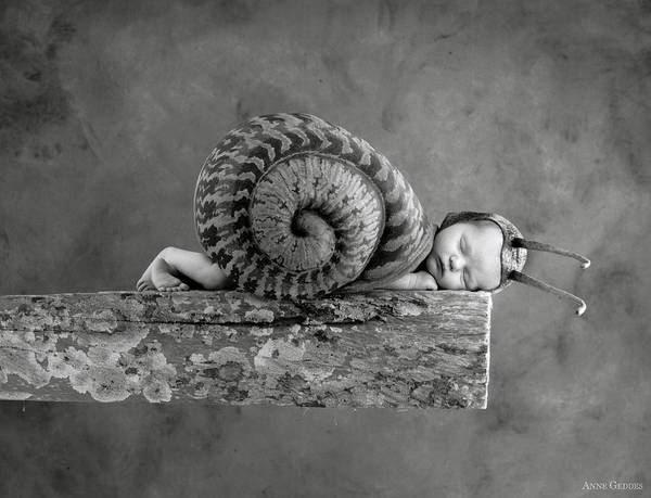 Baby Photograph - Julia Snail by Anne Geddes