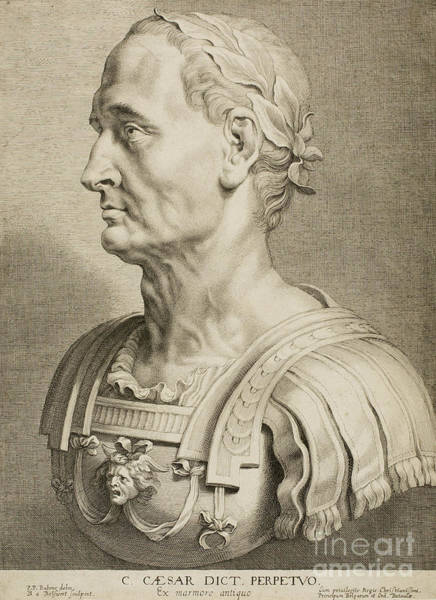 Cesar Wall Art - Drawing - Julius Caesar by Roman School