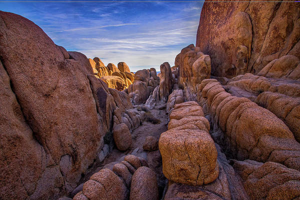 Yucca Plants Photograph - Jumble Rocks by Peter Tellone
