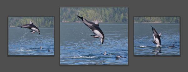 Photograph - Jump For Joy by Randy Hall