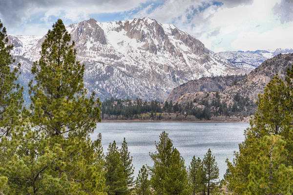 Photograph - June Lake  by AJ Schibig