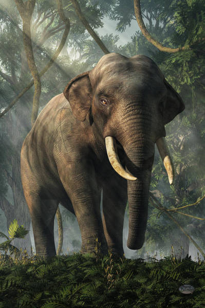 Digital Art - Jungle Elephant by Daniel Eskridge