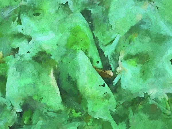 Digital Art - Lichen by Matt Cegelis